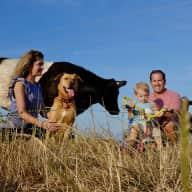 Profile image for pet sitter Glen