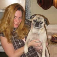 Profile image for pet sitter Kelly