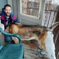 Profile image for pet sitters FELIPE & Sol