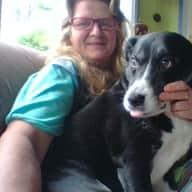 Profile image for pet sitter josephine