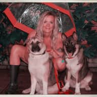 Profile image for pet sitter Michele