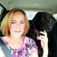 Profile image for pet sitters Stefanie & Bryan