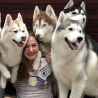 Profile image for pet sitter Mariana