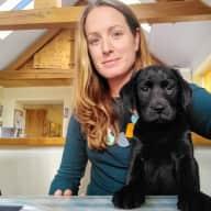 Profile image for pet sitter Charli