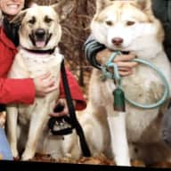Profile image for pet sitters Silvana & Gladys