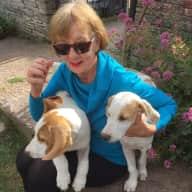 Profile image for pet sitter Eleanor
