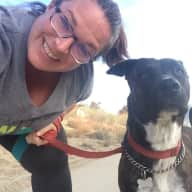 Profile image for pet sitters Mary & Jerome