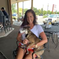 Profile image for pet sitter Susan