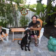 Profile image for pet sitter Philippe