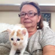 Profile image for pet sitter Denise