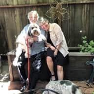 Profile image for pet sitter Bob and Carol