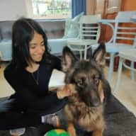 Profile image for pet sitters Shirley & Rohan
