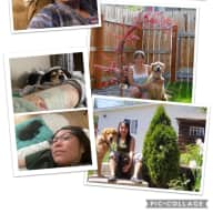 Profile image for pet sitters Vangie & Greg