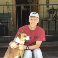 Profile image for pet sitter Daniel