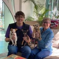 Profile image for pet sitters Alexandria & Alison