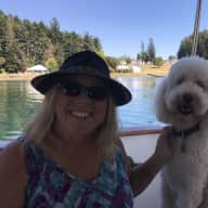 Profile image for pet sitter Catherine