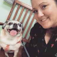 Profile image for pet sitter Bridgette