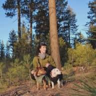 Profile image for pet sitter Breanna Joy