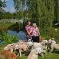 Profile image for pet sitters karen & Mike