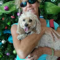 Profile image for pet sitter Cathi