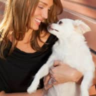 Profile image for pet sitter Alexis