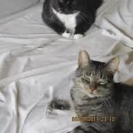 Fletcher and Tux
