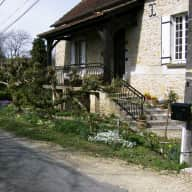 Your chance to share our multi-cat home in the Dordogne