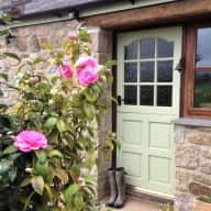 Dog and poultry sitter in beautiful rural Cornwall