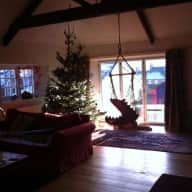 Someone to look after my gorgeous Siamese cat and lovely house in central Totnes