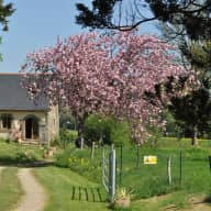 Pets / House sitter required for very rural location, Northern France