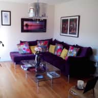 Cat lover needed for 2 weeks ( 10th-24th September 2016) in lovely bright modern house in Dublin close to great amenities.