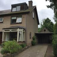 Seeking house-dog sitter December 18 - January 3 in Heilig Landstichting, The Netherlands