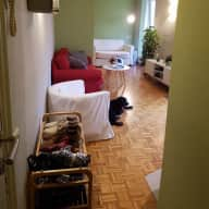 Beautiful Apartment in El Born and 2 adorable dogs