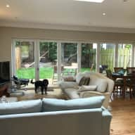Newly refurbished ground floor Victorian garden flat with 2 cute dogs needing company