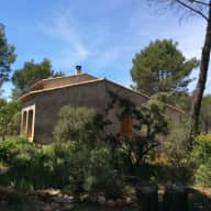 Honeywood - three hectares of pine trees, rosemary, and tranquility in Provence