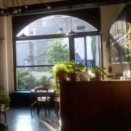 Dog, cat and plant sitter needed in beautiful Brussels appartement with garden