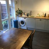 Cat and house sitter needed in Bristol