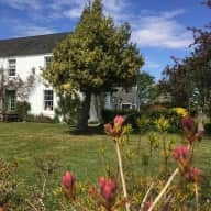 House sitter required for house in country with 2 friendly small dogs, 2 cats & 7 hens, beautiful garden