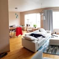 Sunny San Francisco apartment with kitties