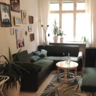 Berlin - Two lovely cats and a 52m2 apartment are looking for a responsible carer