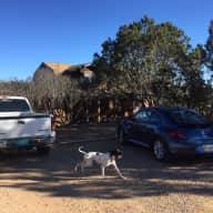 House with yard in Santa Fe suburb, New Mexico