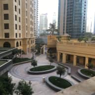 Lovely apartment in JBR, with 2 cats for housesitting