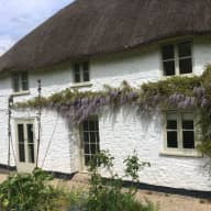 Trusted house & pet sitter wanted for our rural retreat in Somerset