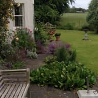 Country house/pet sitter near Edinburgh