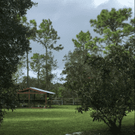 Peaceful home in rural Florida