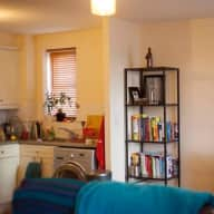 Dog sitter needed over August Bank holiday weekend in a cozy East London flat.