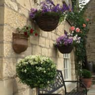 Pet and house sitting in Cotswold Cottage