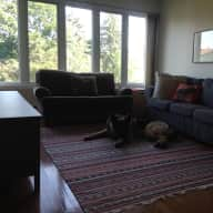 Ottawa 3-story home with dog and house bunny