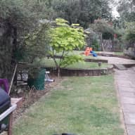 Looking after my cats, keeping the house tidy, watering the garden if there is a lack of rain.