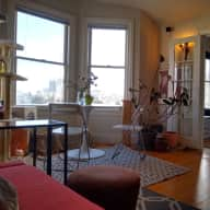 Bright San Francisco Studio & one lovely kitty